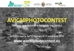 Take part in the Avic30photocontest